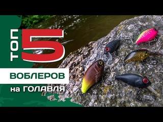 ТОП 5 воблеров на голавля от Павла Лясоцкого. Ловля на перекатах Южного Буга.