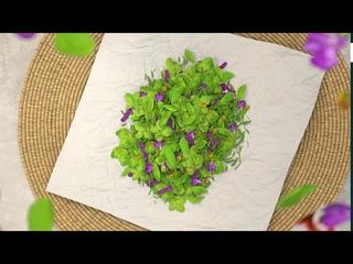 Enerwood Herbal Tea   основной промо ролик