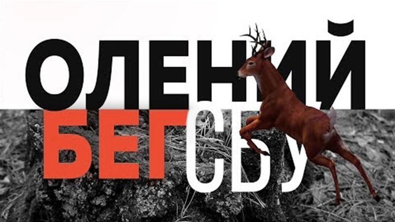 СБУ Олений бег Амплитуда бедер в беге Развитие техники бега