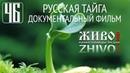 РУССКАЯ ТАЙГА - документальный фильм Павла Пашкова