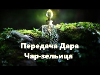 ПЕРЕДАЧА ДАРА ЧАР-ЗЕЛЬИЦА. Спиритический сеанс 4 #НаянаБелосвет