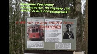 К 135-летию со дня рождения поэта и лингвиста Николая Гумилева ( г.)