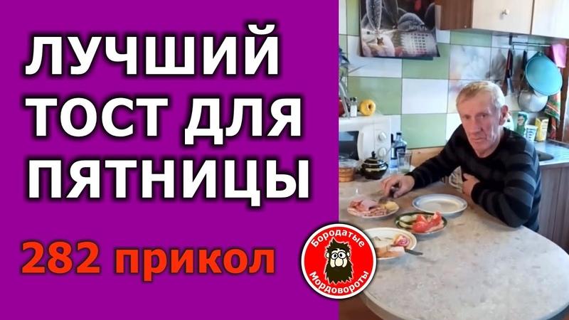 282 Прикол Лучший тост для пятницы БородатыеМордовороты