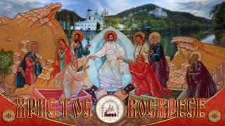 Прямая трансляция. Пасха. Светлое Христово Воскресение   г.