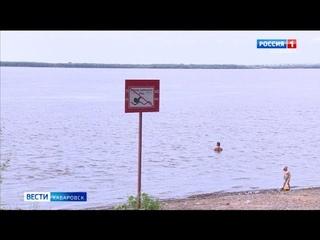 Число пострадавших от аномальной жары в Хабаровском крае растет