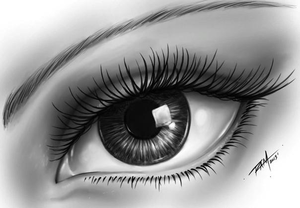 drawings of eyes - 980×678