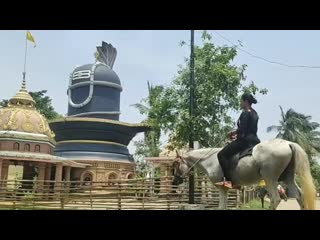 Horse riding by indian