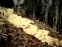 ROLL ONE, COMPLETE: Patterson-Gimlin Bigfoot Film and Preliminary Scenery of Bluff Creek