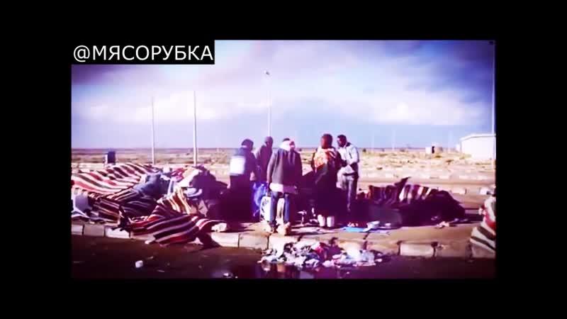 ВСЕ ПО ГРЕБАННОМУ ДЕДУ ДЖИНУ ШАРПУ