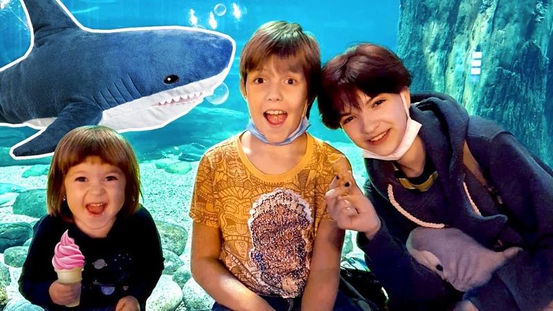 Бьянка идет в 🐳 Океанариум смотреть на рыбок Фэмили влог Привет Бьянка с Машей Капуки и Адрианом