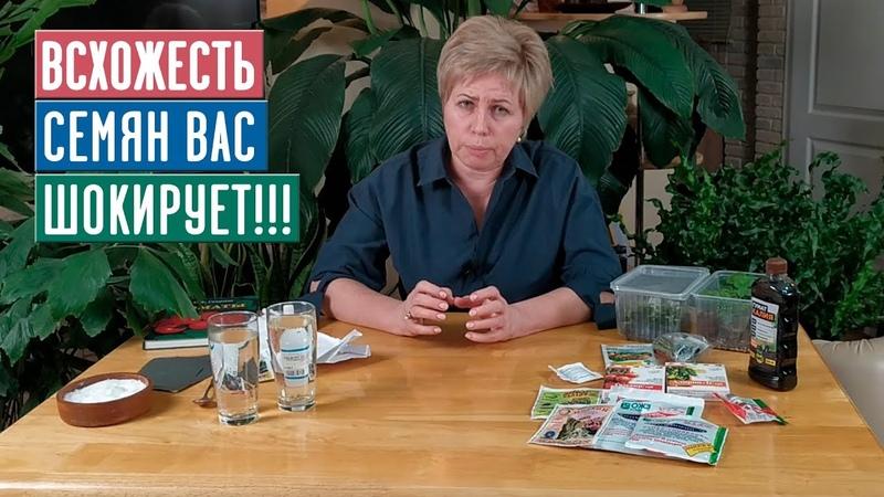 СЕЗОН 2020 ДОБИВАЕМСЯ МАКСИМАЛЬНОЙ ВСХОЖЕСТИ СЕМЯН Инструкция Садовый гид