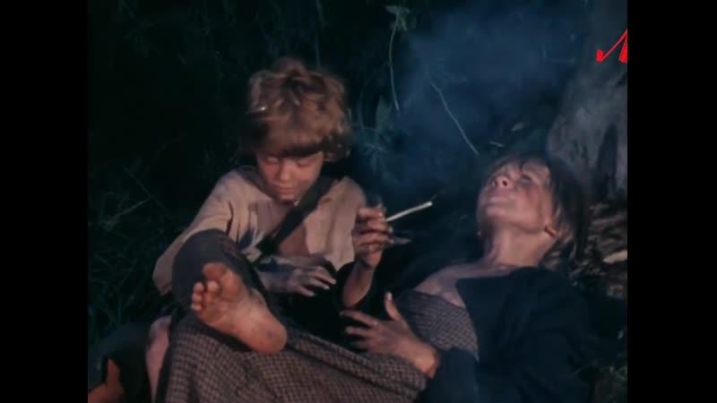 Приключения Тома Сойера и Гекльберри Финна 3 серии Детский приключения СССР