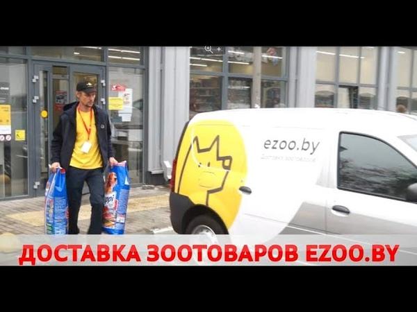 В Бобруйске работает экспресс доставка товаров для животных E