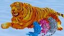 Симулятор Семьи Белого Тигра 3 Рыжая Дикая Кошка Кида и семья. Много маленьких тигрят на Пурумчата
