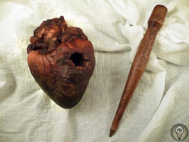 На интернет-аукционе eBay выставлено мумифицированное сердце вампира Как утверждает его владелец, оно принадлежало вампиру, убитому еще в 1912 году. Как говорится в описании лота, орган