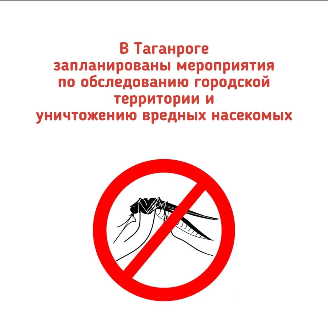 В Таганроге запланированы мероприятия по уничтожению вредных насекомых