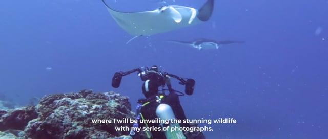 Ocean Encounters by Greg Lecoeur