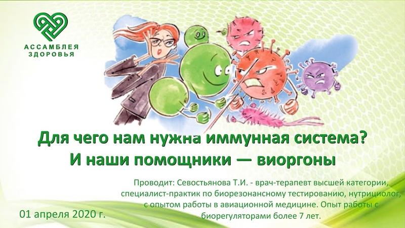Для чего нам нужна иммунная система И наши помощники виоргоны