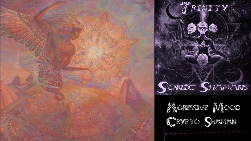 AGRESSIVE MOOD - CRYPTO SHAMAN - 180 BPM - Sonic Tantra Psytrance Music Records