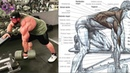 Rutina de Espalda y Pierna, Back and Legs Workout