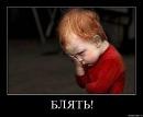 Фотоальбом Виктории Шелест