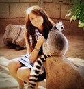 Личный фотоальбом Anastasia Sokolova