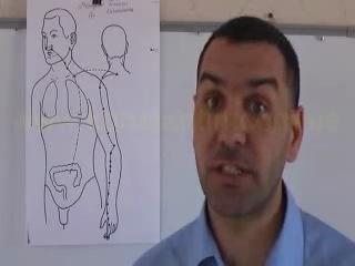 Меридиан толстого кишечника