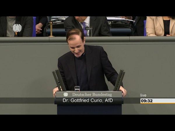 Gottfried Curo AFD Herr Minister die Bürger spüren das die Politik mit falscher Münze regiert