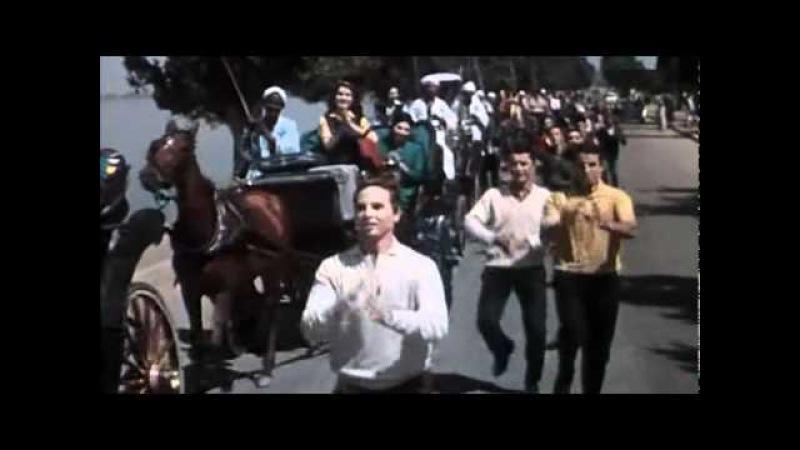 Luxor Baladna El Azabi الاقصر بلدنا محمد العزبى