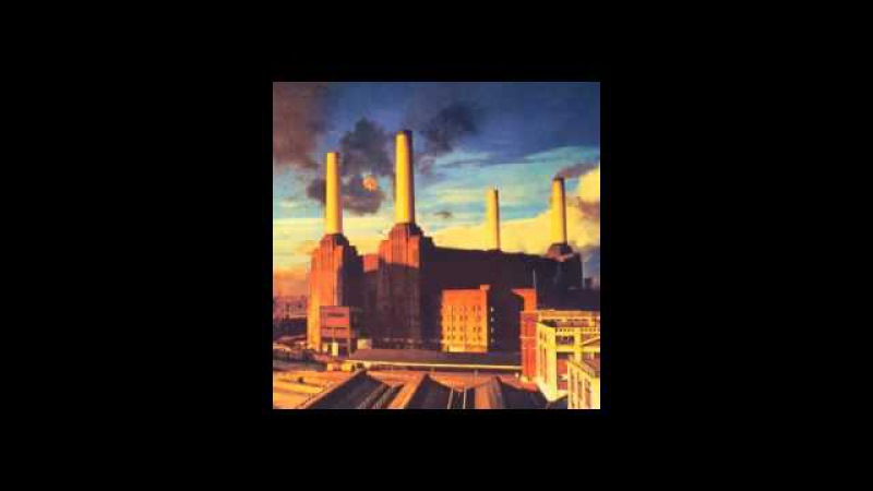 Pink Floyd - Pigs On The Wing 1 (Alameda Coliseum, Oakland, California, 09.05.1977)