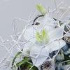 Airy Flowers, творческая мастерская.