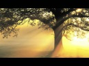 Mantra for Compassion and Healing - Guru Ram Das Chant by Mirabai Ceiba