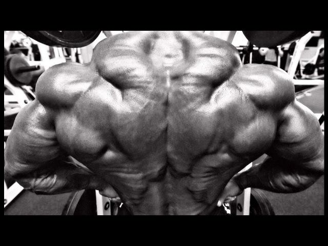 Bodybuilding Motivation NO PAIN NO GAIN