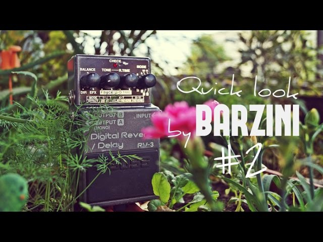 Quick look by BARZINI 2 - Boss RV-3