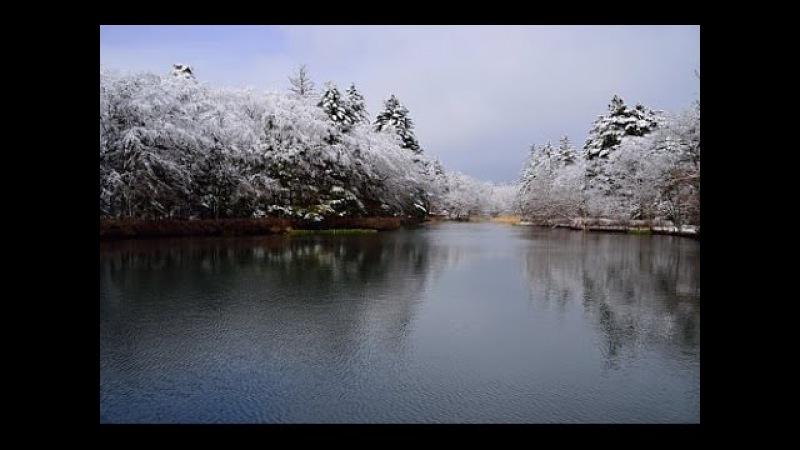 春を待つ軽井沢の雲場池と白糸の滝・4K撮影