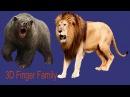 Lion King Vs Bear Epic Battle Finger Family  Nursery rhymes   3d Animated cartoon Rhymes For kids