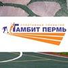 Спортивные покрытия из резиновой крошки | Гамбит