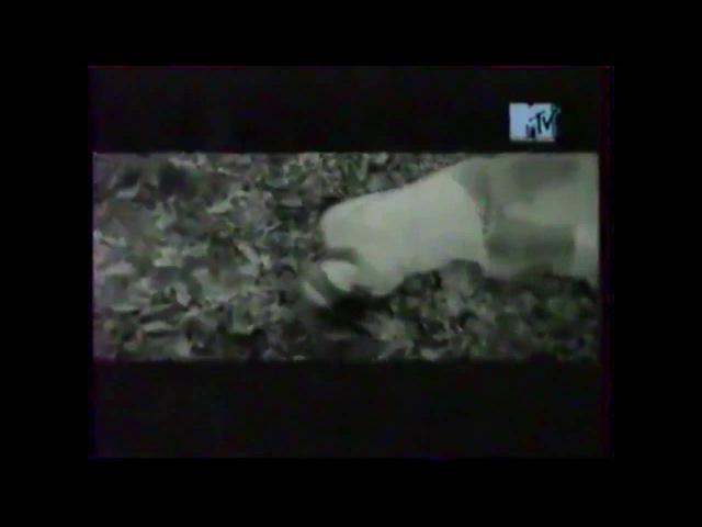 Анонс 100 лучших клипов года (MTV Россия, зима 2001-2002)
