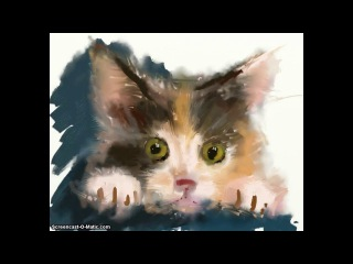 Drawing the fluffy kitten