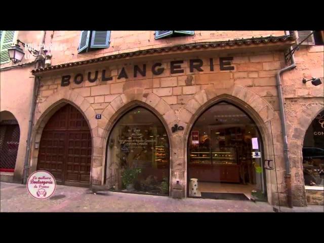 CAT FAIL Cat Runs Into Glass Door on French Bakery Programme.