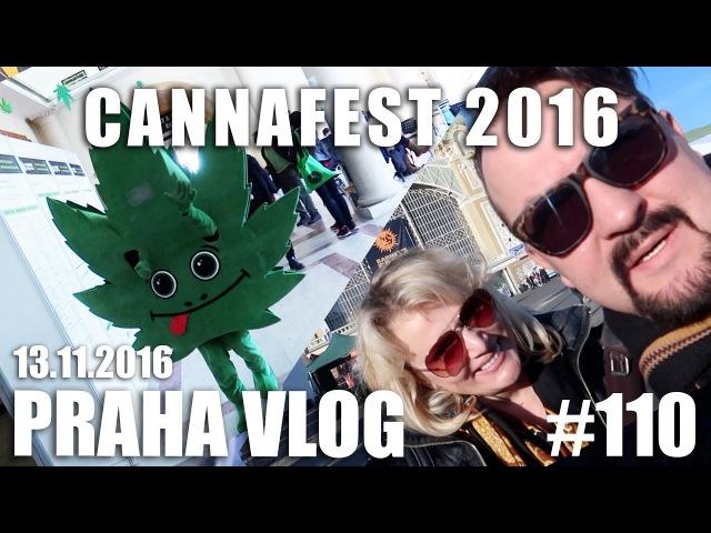 Правда и вымыслы о марихуане в Чехии CANNAFEST 2016 Красивый вид на осеннюю Прагу Praha Vlog 110