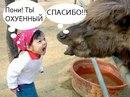 Фотоальбом Артёма Марцинкевича