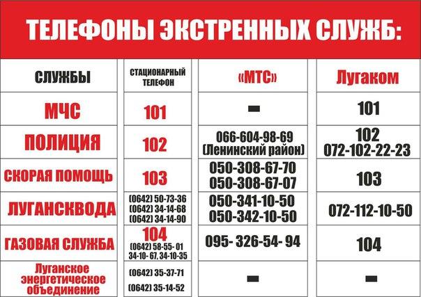 Фото №456263759 со страницы Елены Гречиной