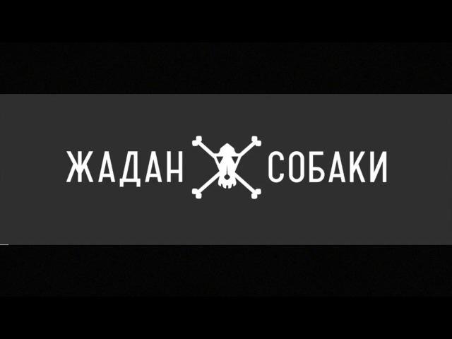 Відеозапрошення Харків 24 лютого 2000 ART AREA дк Жадан і Собаки