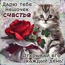 Фотоальбом Наджии Шигаповой