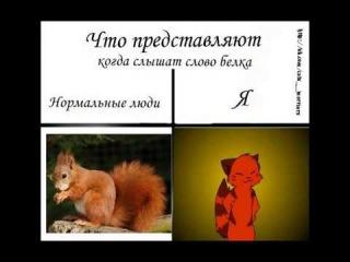 КВшники vs Обычные люди // когда ты КВшник