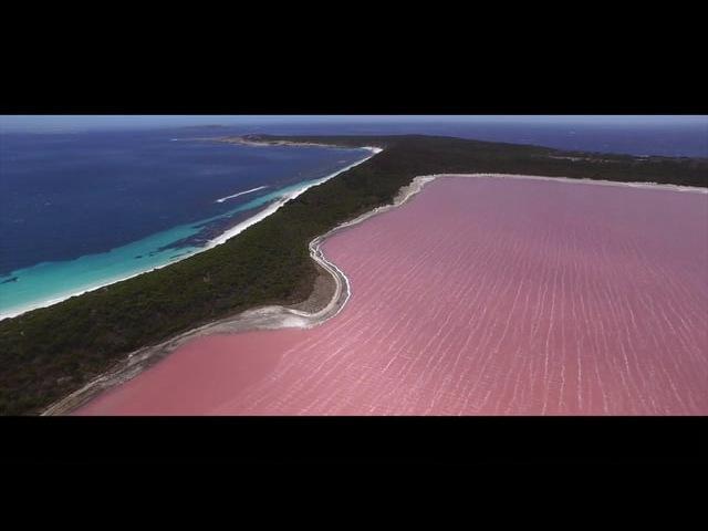 Lake Hillier, Middle Island W.A. Esperance Island Cruises DJI