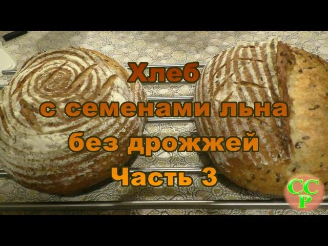 Хлеб с семенами льна без дрожжей Часть 3