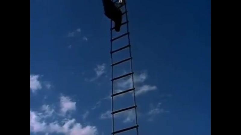Лестница в небо кинофильм Тот самый Мюнхгаузен wclip scscscrp