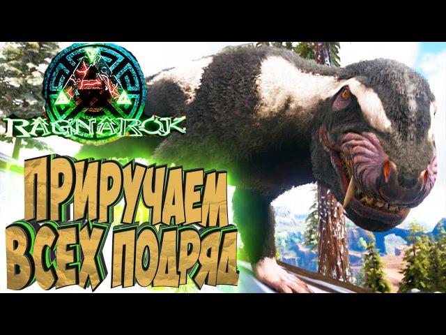 ПУРЛОВИЯ И НОВЫЙ КЕТЦАЛЬ ARK Survival Evolved Выживание на Ragnarok 27